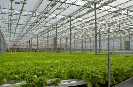 Агрокомплекс в Усть-Катаве – работа идет по плану
