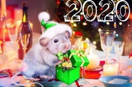 Как надлежит встречать год Крысы?